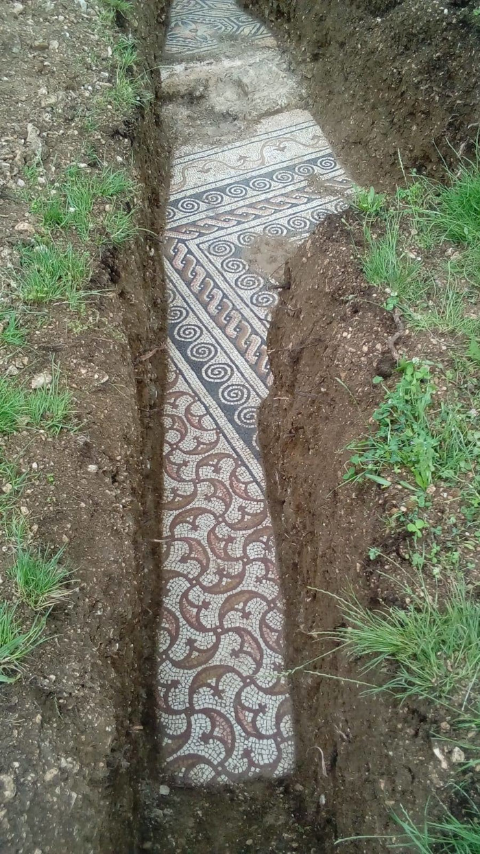 a portion of the roman mosaic floor