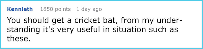 accidental crickets infestation comment kennleth