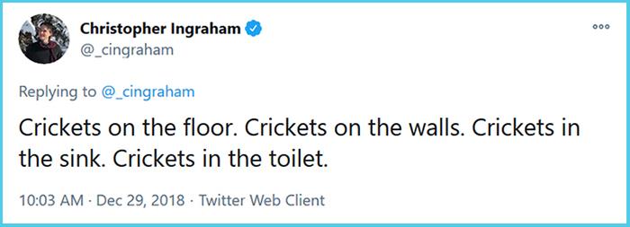 crickets everywhere funny story