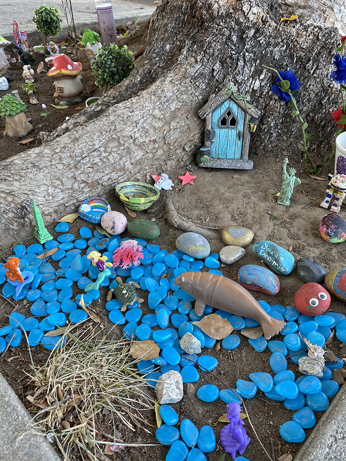 fairy garden setup by a four-year-old girl named eliana