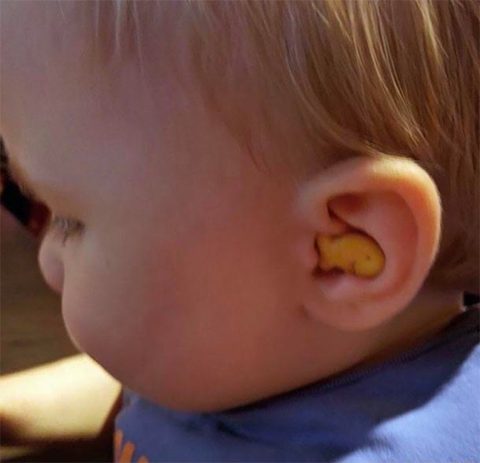 fish biscuit fits into baby ear