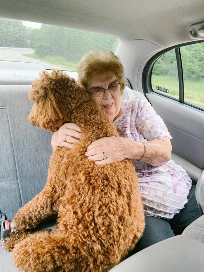 granny comforts a scared dog in the car