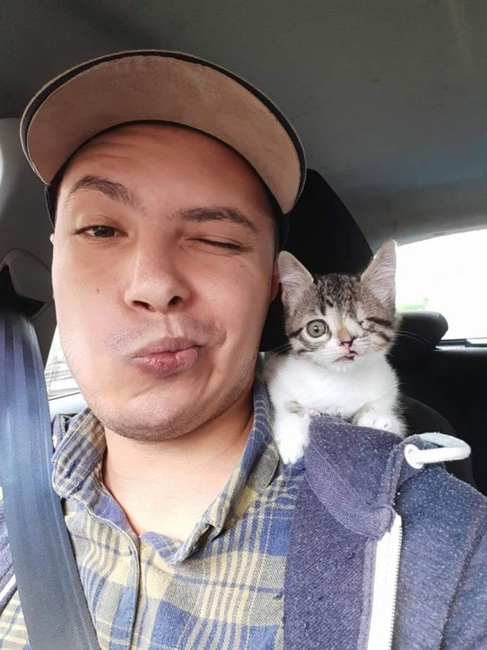 kitten with facial birth defect and new owner rescue pet photos