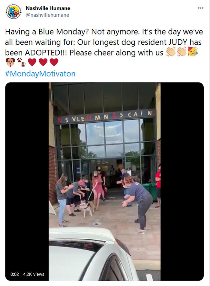 longest resident shelter dog finally adopted