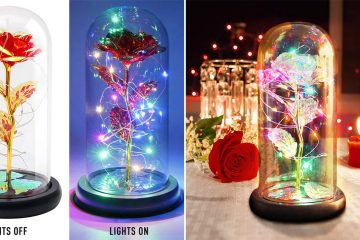 Enchanted Flower lamp
