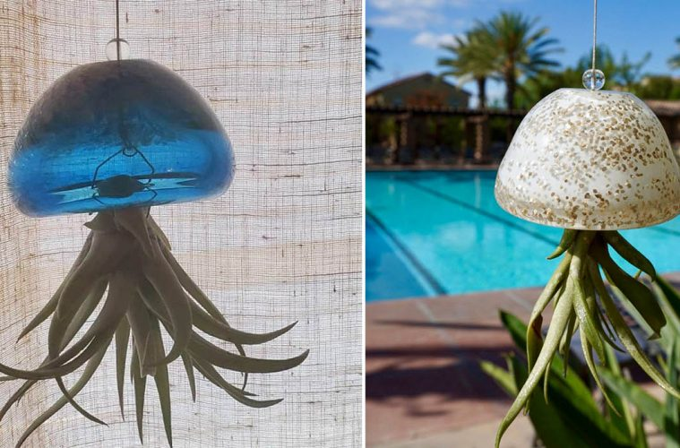 Glass Jellyfish Air planter