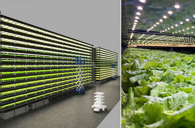 Wind-powered vertical farm
