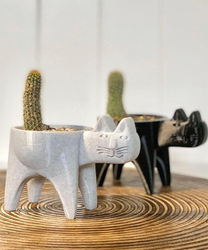 cat cactus planter
