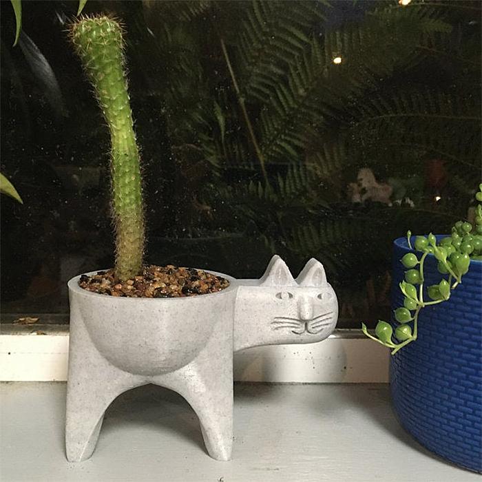 cute cat cactus planter grey marble
