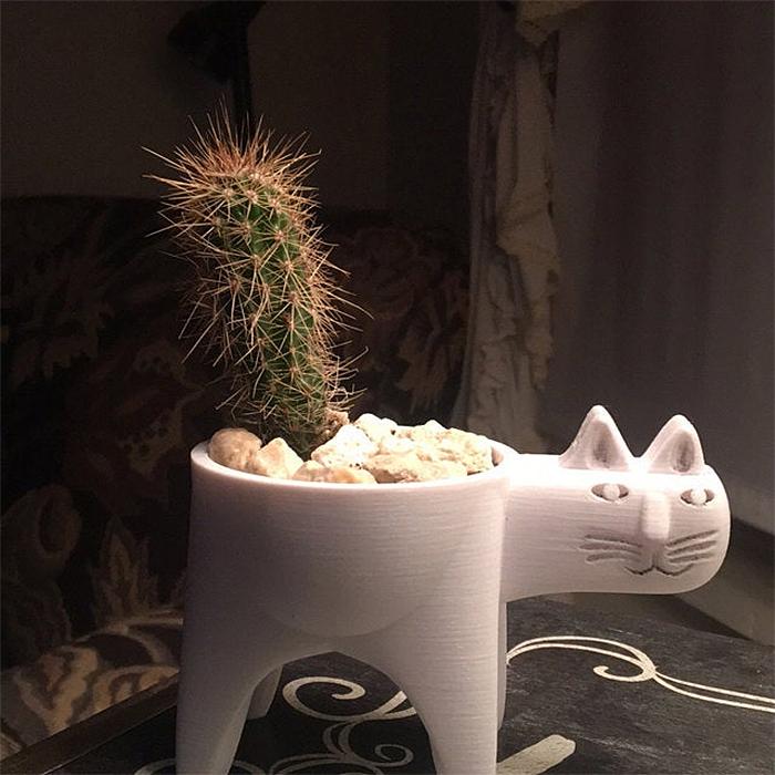 cute cat-shaped succulent vase