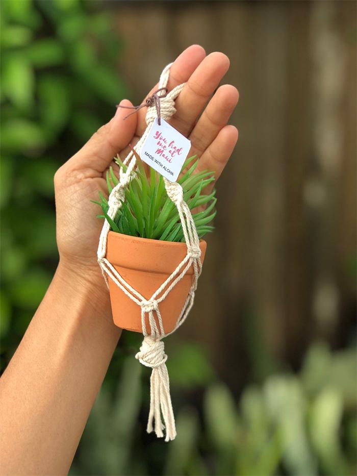 hanging pot planter holder