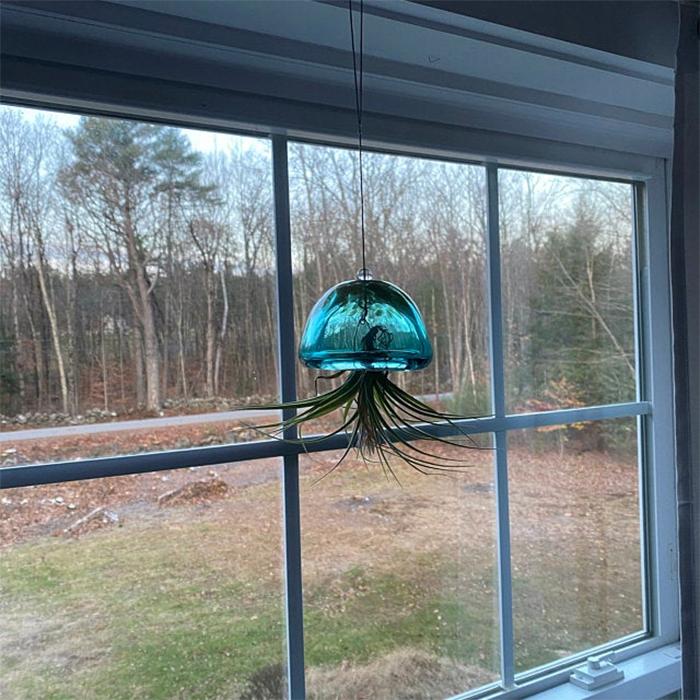 jellyfish air planter green