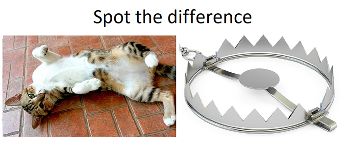 kitty and mouse trap difference