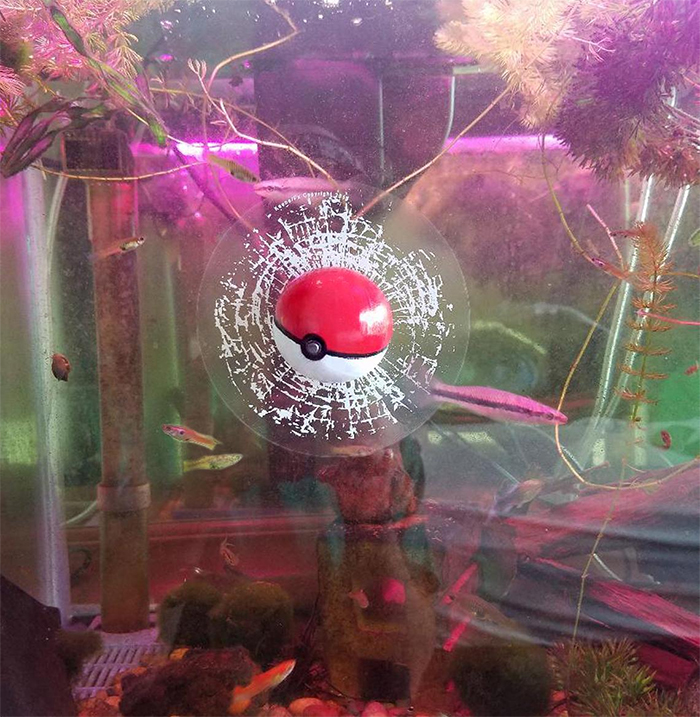 pokemon ball broken glass prank sticker