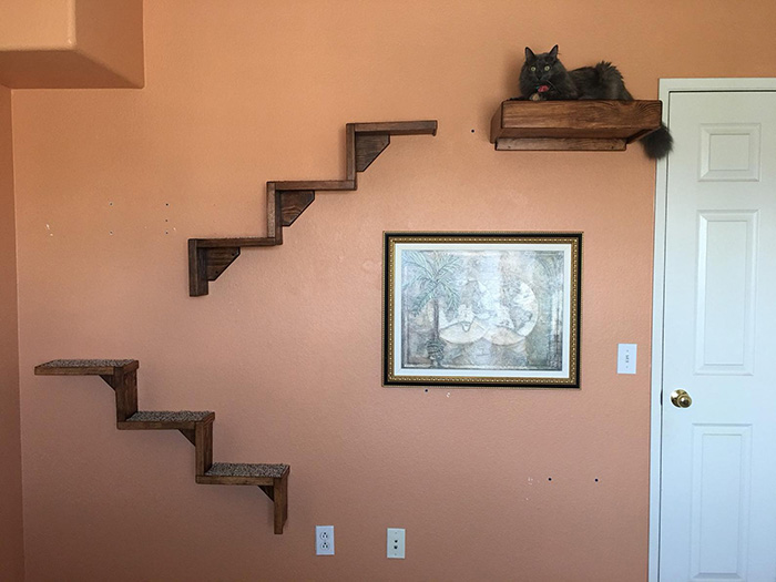 portesuelogoods floating cat stairs