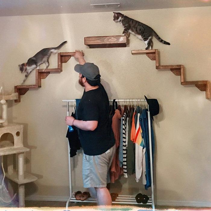 portesuelogoods wall-hanging feline perch customer review brooke