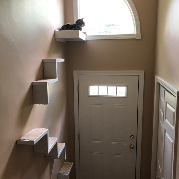 portesuelogoods wall-hanging feline perch customer review elizabeth