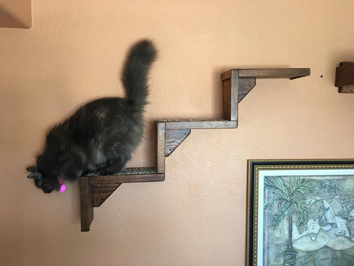 portesuelogoods wall-hanging floating cat stairs