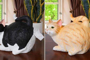 Cat butt tissue holder