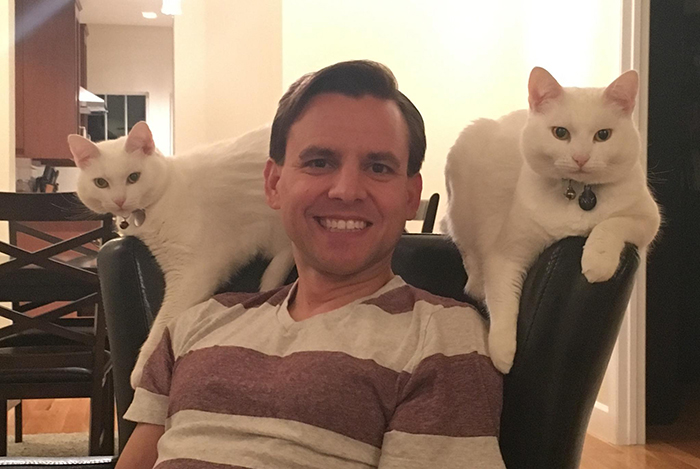 cats surrounding owner's husband