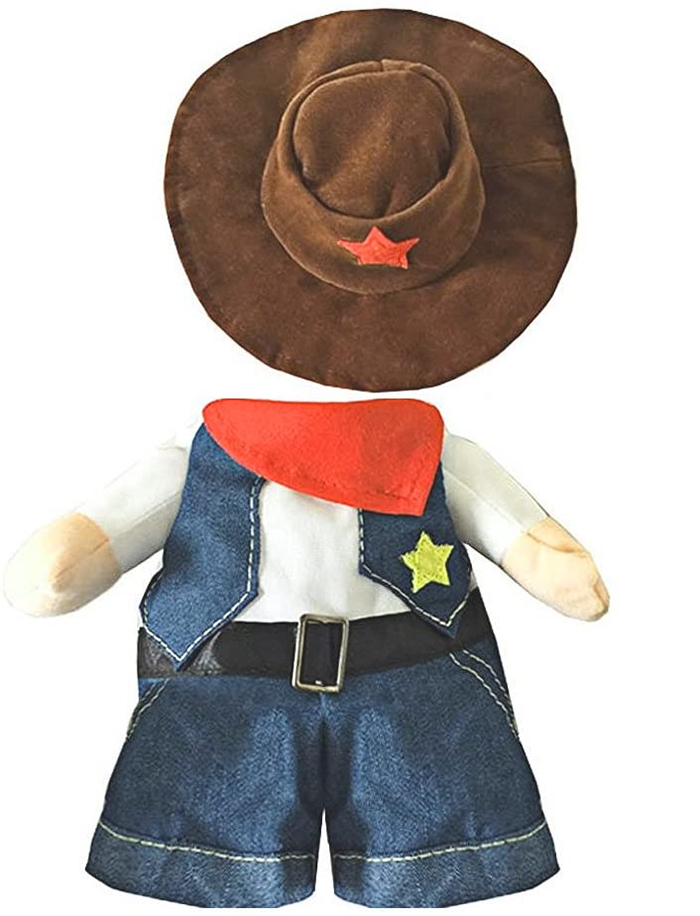 cowboy cat costume with hat