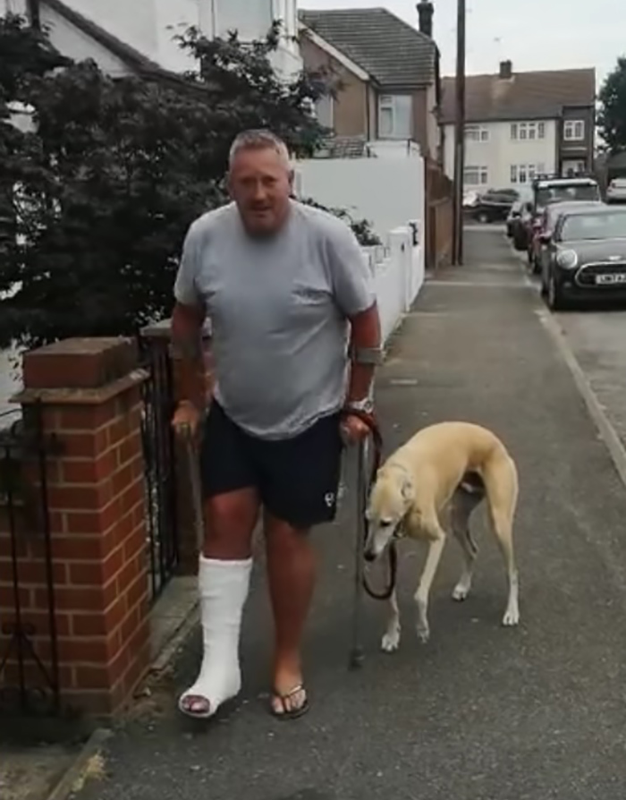 dog imitating injured owner using crutches