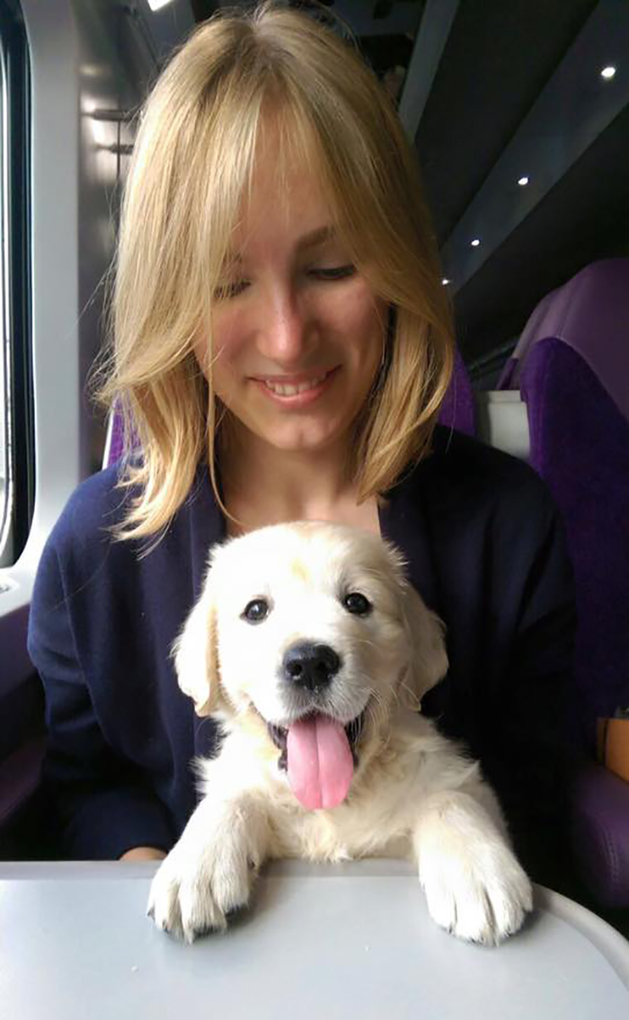 dog on his first train ride