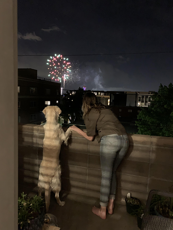 dog watching fireworks with owner's girlfriend
