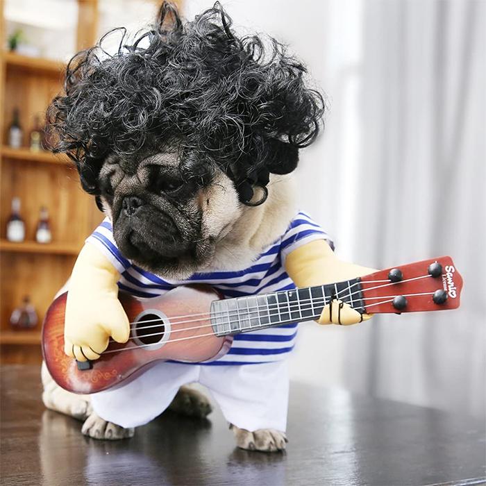 funny guitarist dog costume