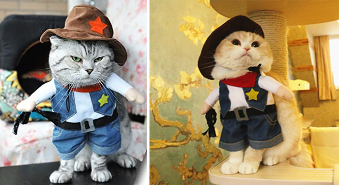 funny western style pet outfit