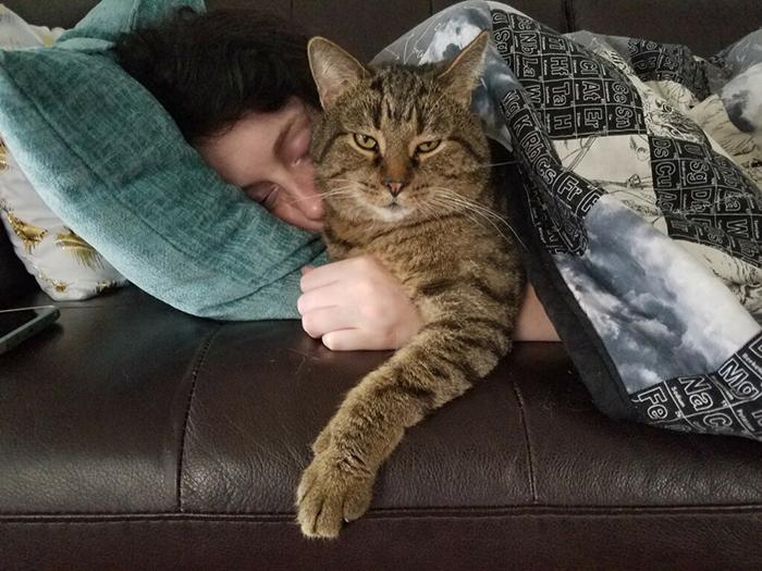 girlfriend sleeping while hugging cat