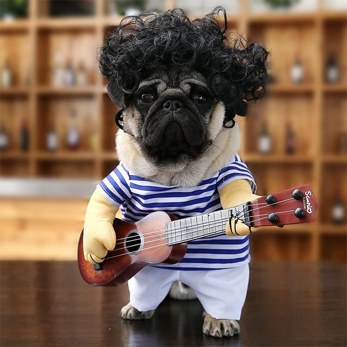 guitarist dog costume with wig