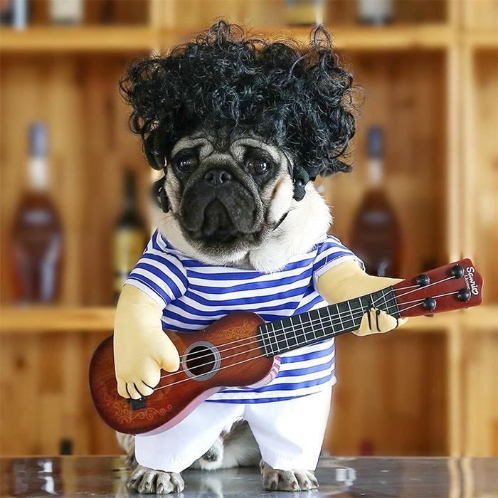guitarist dog costume