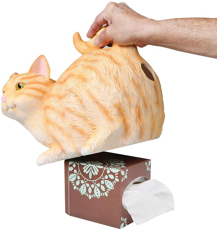 paper napkin dispenser orange tabby