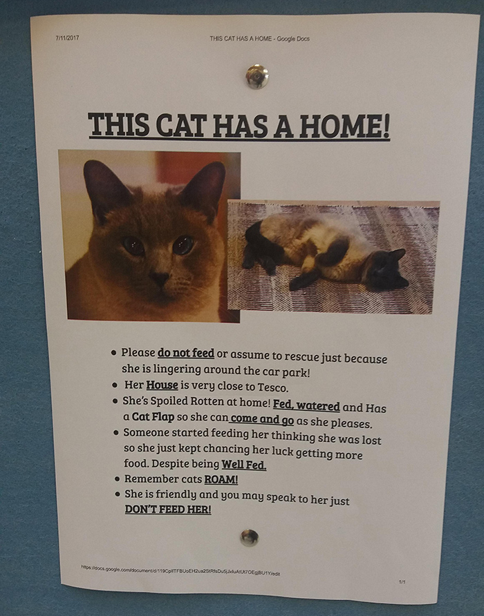 pet owner warning sign kitten has a home