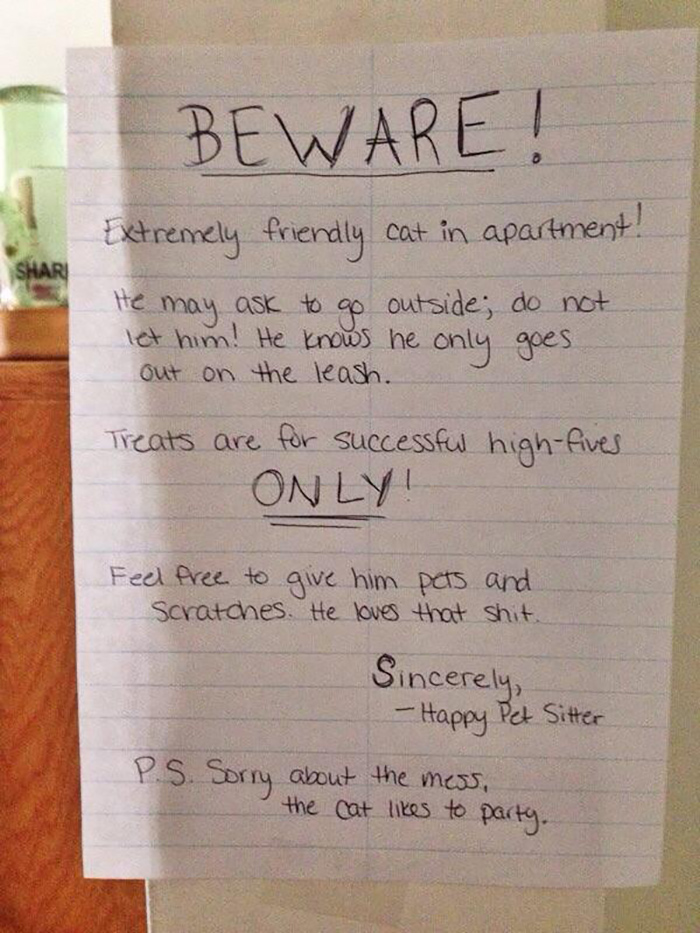 pet owner warning sign kitten in the apartment