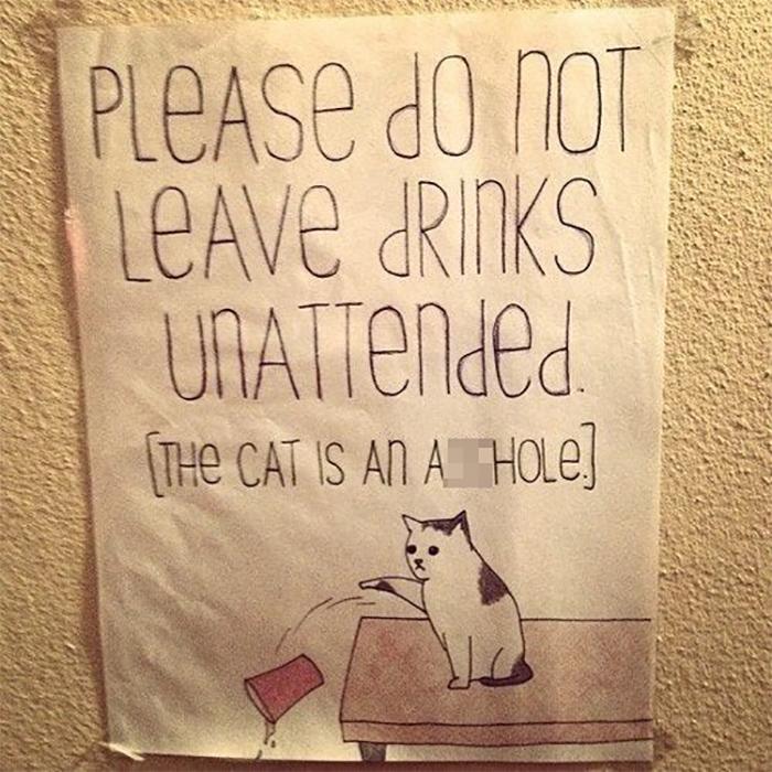 pet owner warning sign leaving drinks unattended