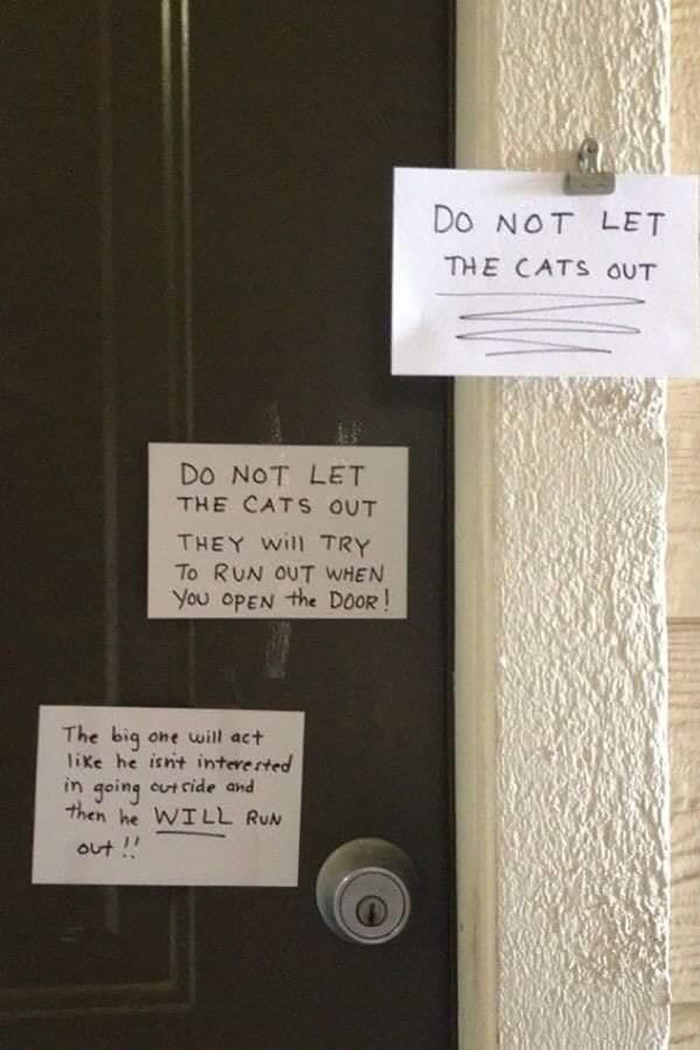 pet owner warning sign letting cat out