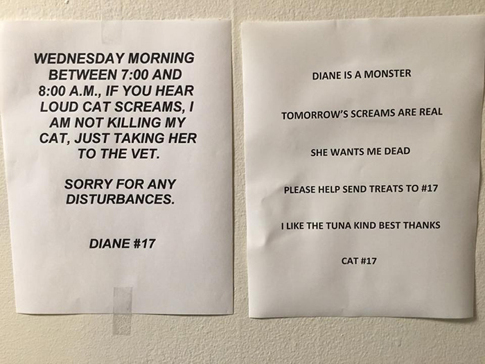pet owner warning sign screaming cat