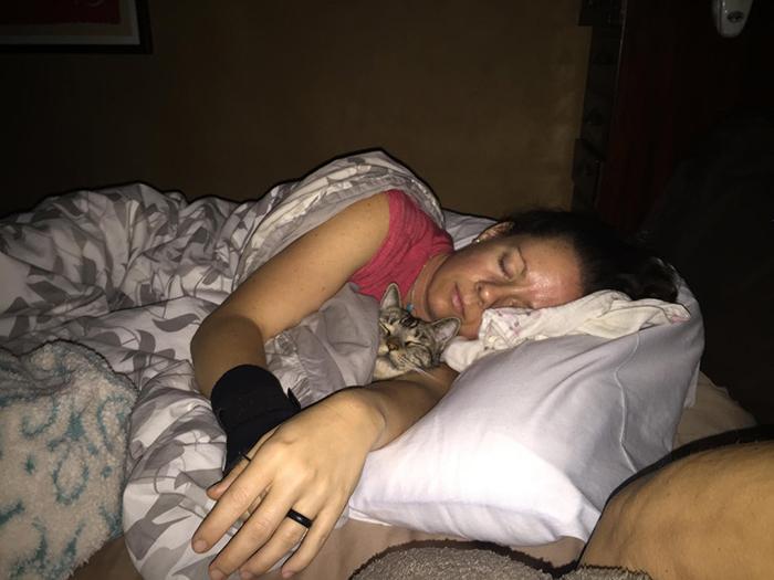 pets stealing owners' partners cat sleeping beside owner's girlfriend