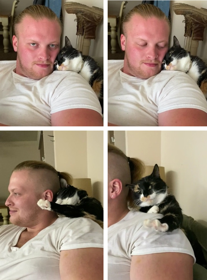 pets stealing owners' partners cat sleeping on shoulder of owner's boyfriend