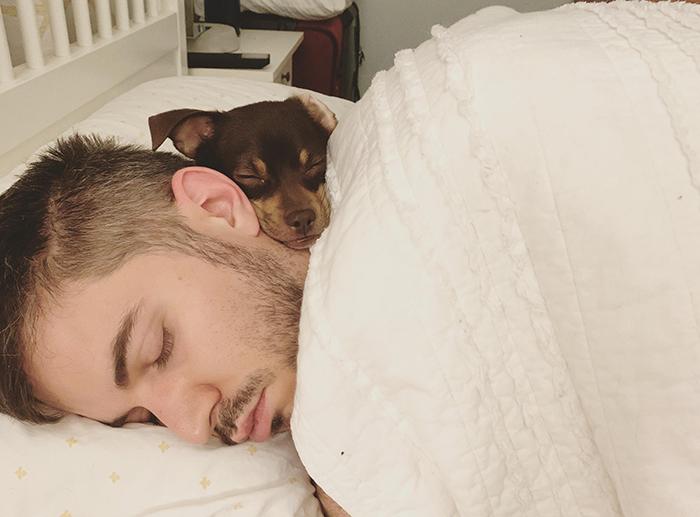 pets stealing owners' partners dog sleeping beside owner's boyfriend