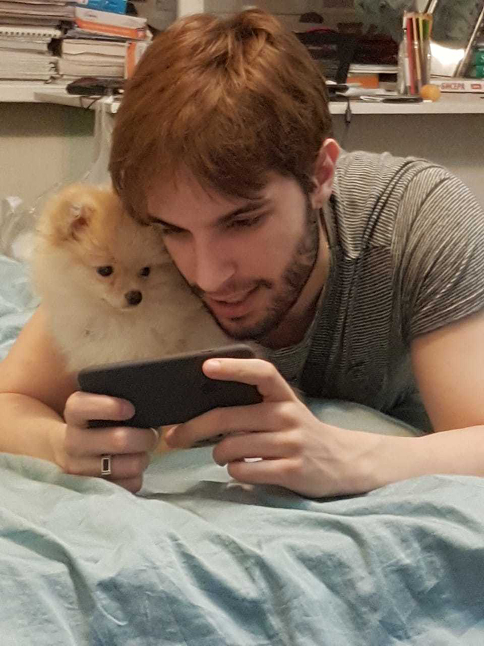 pets stealing owners' partners dog watching owner's boyfriend play mobile games