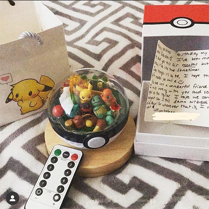 pokemon terrarium remote control