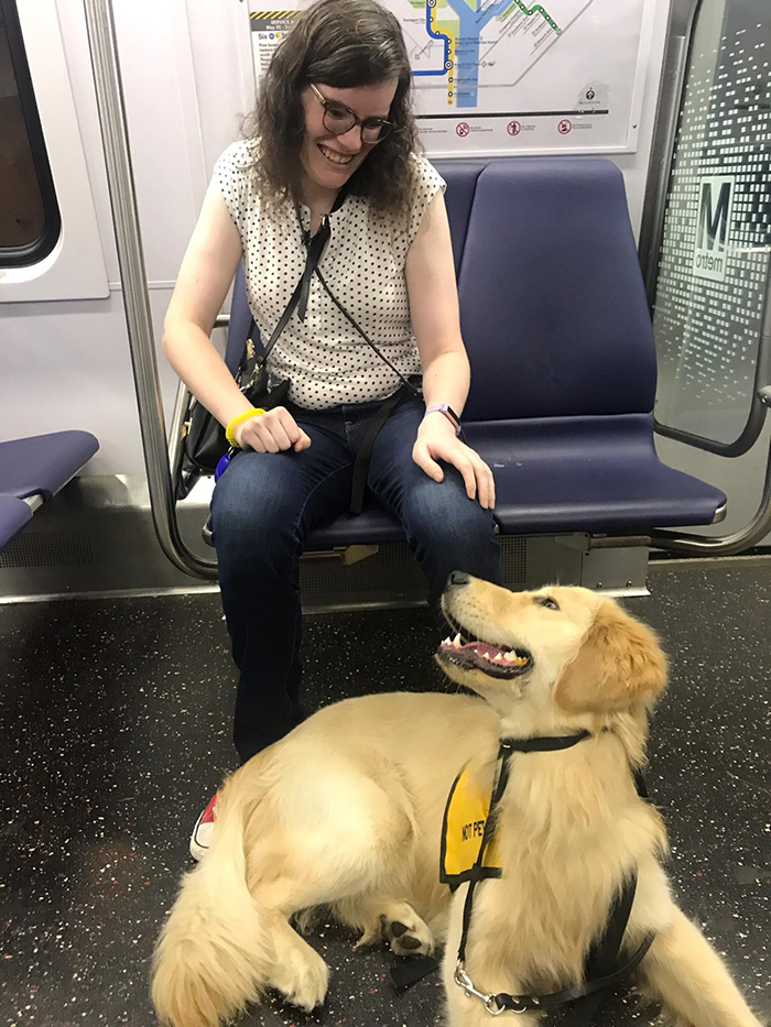 service dog first ride on train