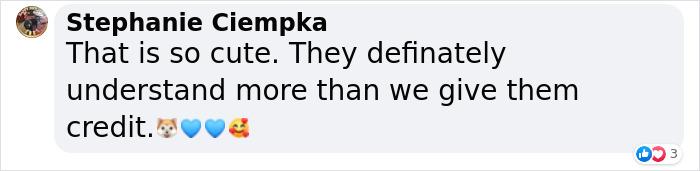 stephanie ciempka facebook comment on lurcher imitating injured owner