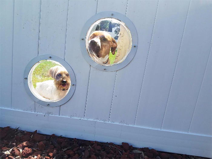 transparent acrylic dome for dogs