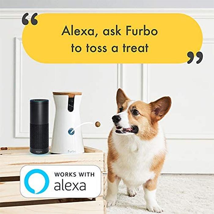treat tossing dog camera alexa compatible