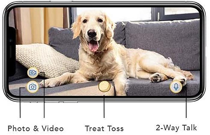 treat tossing dog camera app
