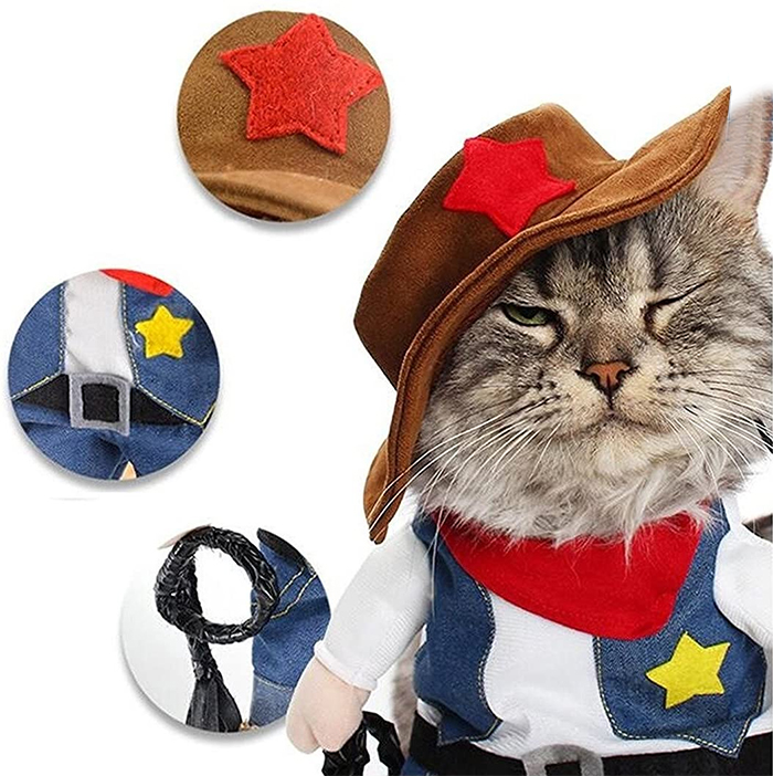western style pet outfit